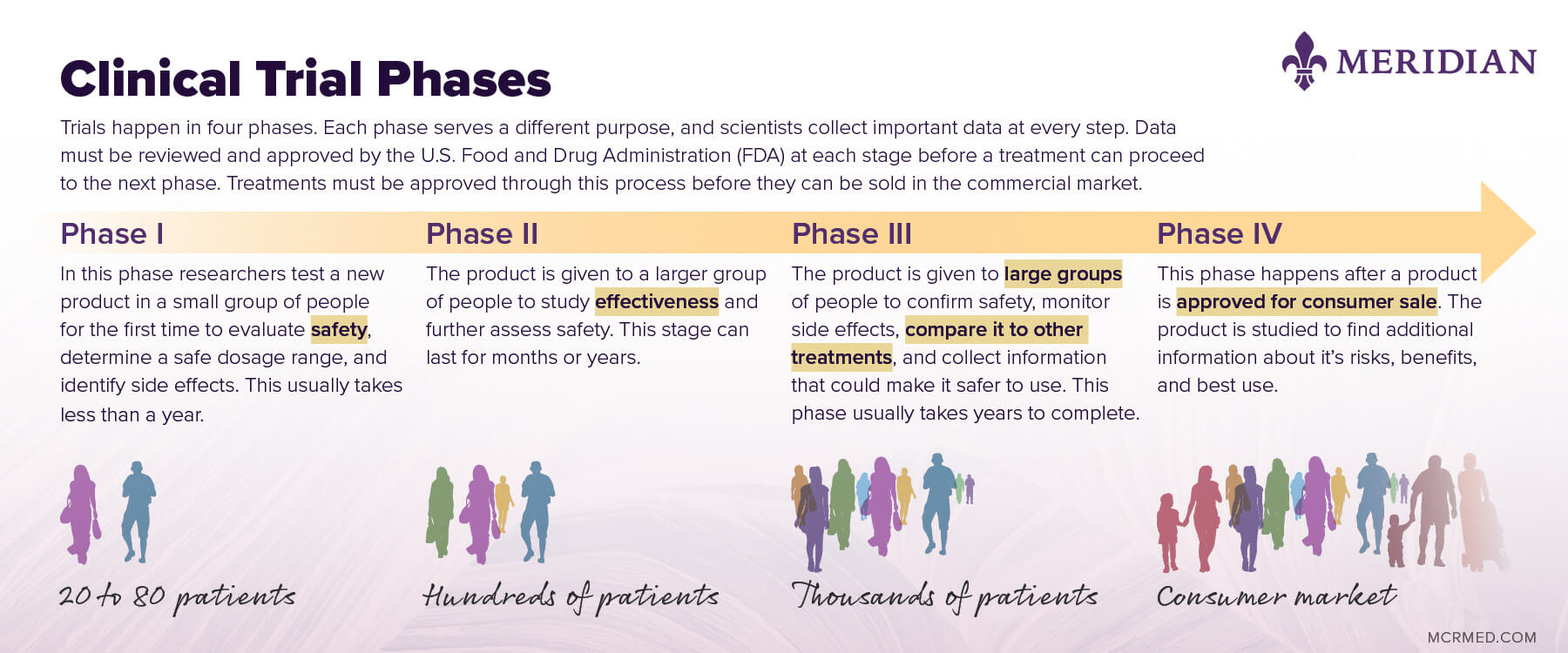 Meridian Clinical Trial Process Infographic
